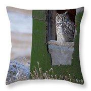 Subarticus.. Throw Pillow