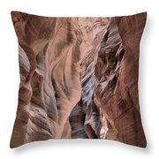 Subdued Colors Of Buckskin Throw Pillow