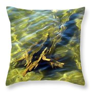 Submerged Tree Abstract Throw Pillow