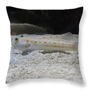 Substrate-sifting Diamond Watchman Goby Pair Throw Pillow