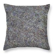 Subtle Lichen On Granite Texture Throw Pillow