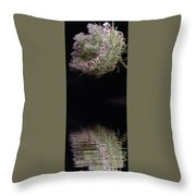 Subtle Reflections 1 Throw Pillow