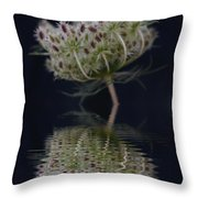 Subtle Reflections 2 Throw Pillow
