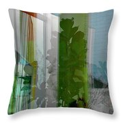 Subtle Reflections Throw Pillow