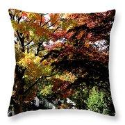 Suburban Autumn Throw Pillow