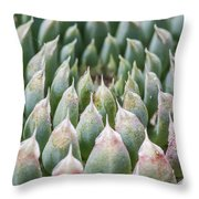 Succulant Spikes Throw Pillow