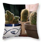 Succulent Backlight Throw Pillow