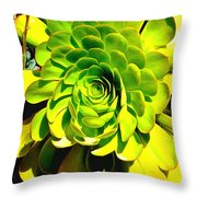 Succulent Close Up Throw Pillow