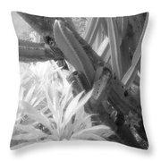 Succulent Delight Throw Pillow
