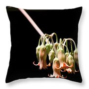 Succulent Flower Throw Pillow