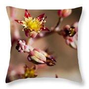 Succulent Flowers Throw Pillow