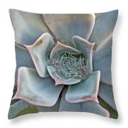 Succulent In Pastels Throw Pillow