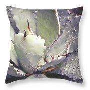 Succulent Raindrops Throw Pillow