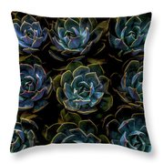 Succulent Throw Pillow by Rod Sterling