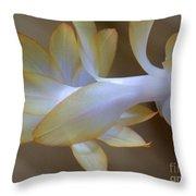 Succulent Season Throw Pillow