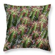 Succulent Series Vi Throw Pillow