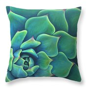 Succulent Study 2 Throw Pillow