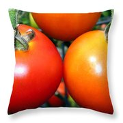 Succulent Tomatoes Throw Pillow
