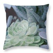 Succulents 2 Throw Pillow