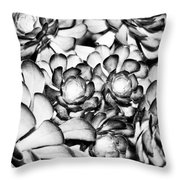 Succulents Monochrome Throw Pillow