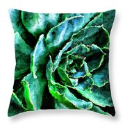 succulents Rutgers University Gardens Throw Pillow