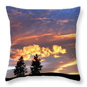 Sudden Splendor Throw Pillow