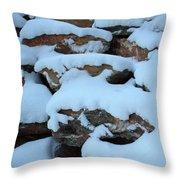 Suddenly Winter 2 Throw Pillow