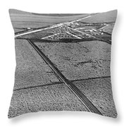 Sugar Cane In The Everglades Throw Pillow