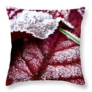 Sugar Coated Morning Throw Pillow