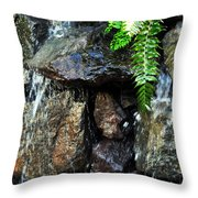 Sugar From The Sun Waterfall Throw Pillow