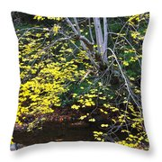Sugar Maple Birch River Mirror Image Throw Pillow