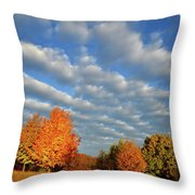 Sugar Maple Sunrise Along Route 31 Throw Pillow