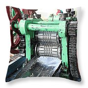 Sugarcane Juice Throw Pillow