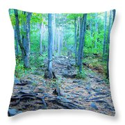 Sugarloaf Mountain Trail Throw Pillow
