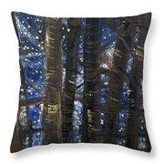 Sukkot II Stars 2015035  Throw Pillow