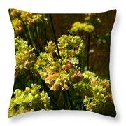 Sulfur Flower Throw Pillow