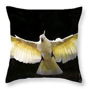 Sulphur Crested Cockatoo In Flight Throw Pillow