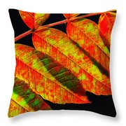 Sumac Leaves Throw Pillow