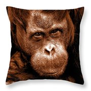 Sumatran Orangutan Female Throw Pillow