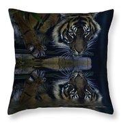 Sumatran Tiger Reflection Throw Pillow
