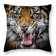 Sumatran Tiger Snarl Throw Pillow