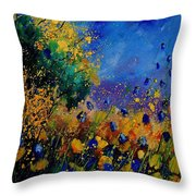 Summer 459090 Throw Pillow
