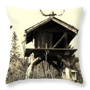 Summer Alaskan Cache Throw Pillow
