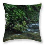 Summer Along Birch River Throw Pillow