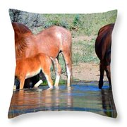 Summer And The Living Is Easy Throw Pillow