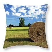 Summer And Work. Throw Pillow