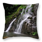 Summer At Glen Moss Falls Throw Pillow