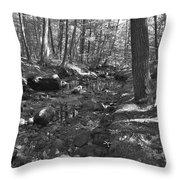 Summer B2015 72 Throw Pillow