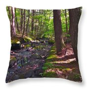 Summer B2015 73 Throw Pillow