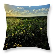 Summer Beach Daisy 2 Throw Pillow